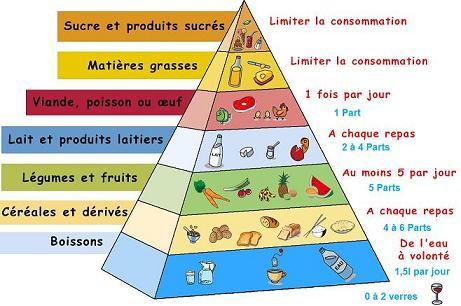 pyramide_alimentaire1.jpg