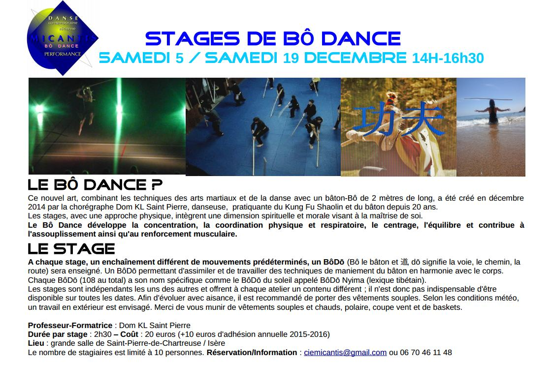 Stages de Bô Dancejpg_Page1.jpg