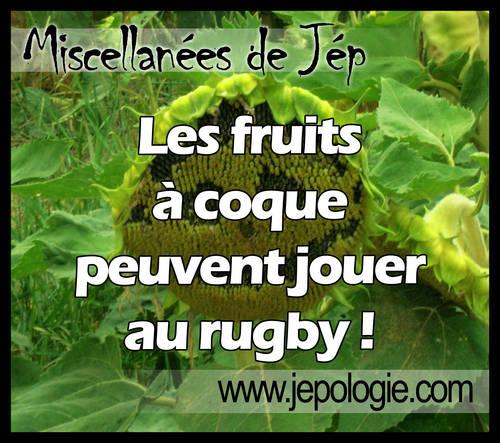 Les fruits à coque peuvent jouer au rugby.jpg