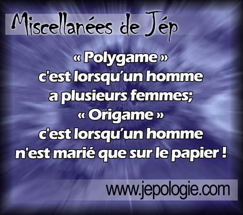 Polygame c est quand un homme à plusieurs femmes Origame c est quand un homme n est marié que sur le papier.jpg