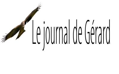 Le journal de Gérard