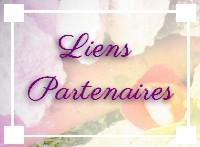 http://static.blog4ever.com/2011/07/511001/partenaires.jpg