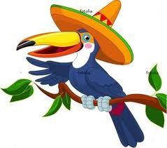 Les oiseaux du Mexique