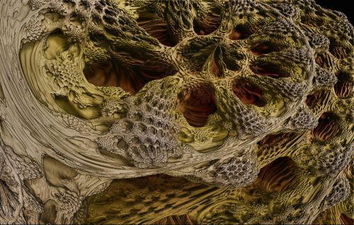 Anfractuosités fractales_2