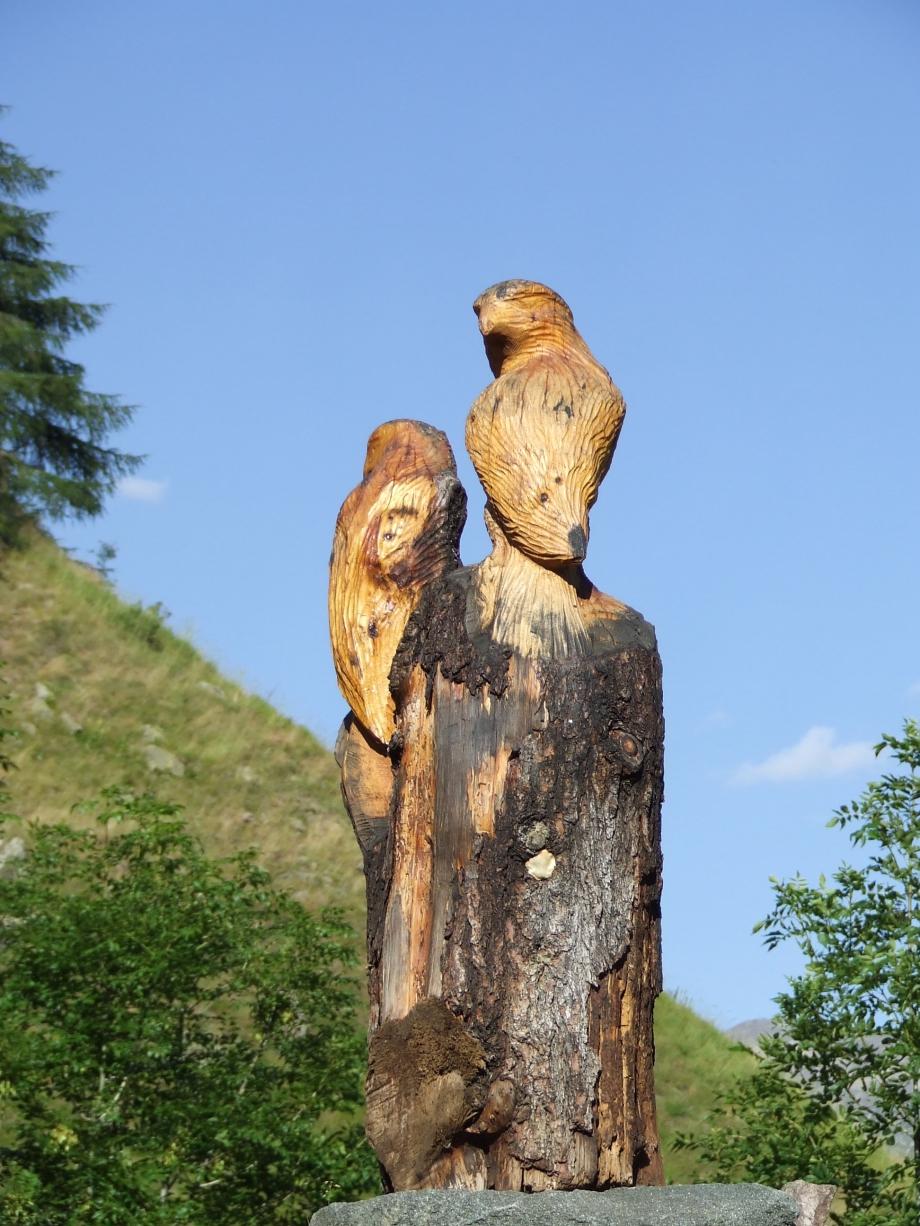 Aigles de bois - Refuge du Tourond - Vallée du Tourond -  Haute route du Vieux Chaillol - 26.07.07 - 1.JPG