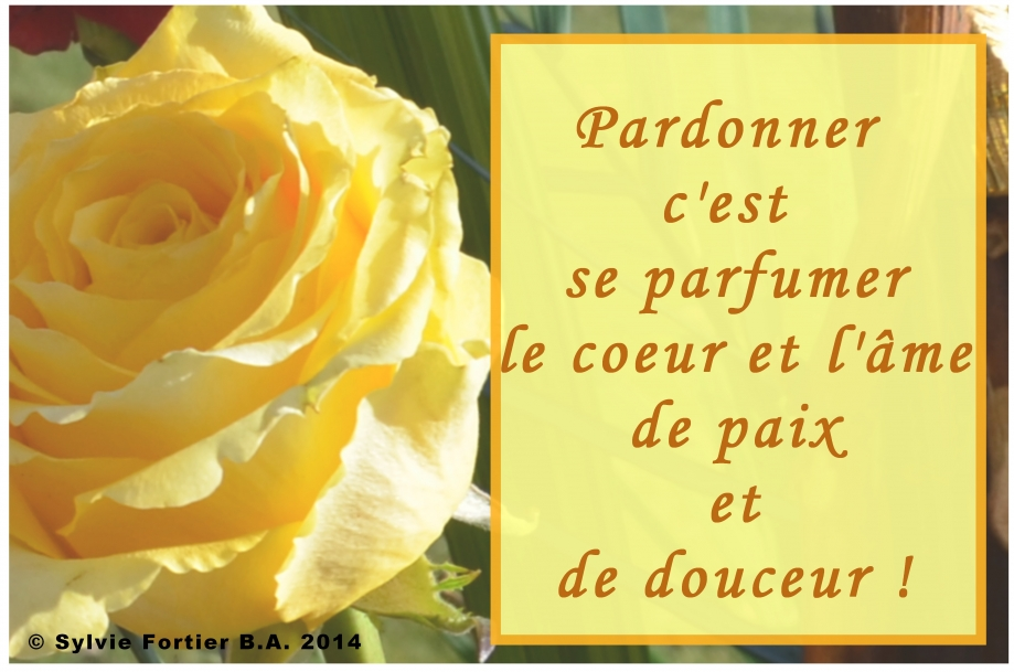 Pardonner 2016 7.jpg