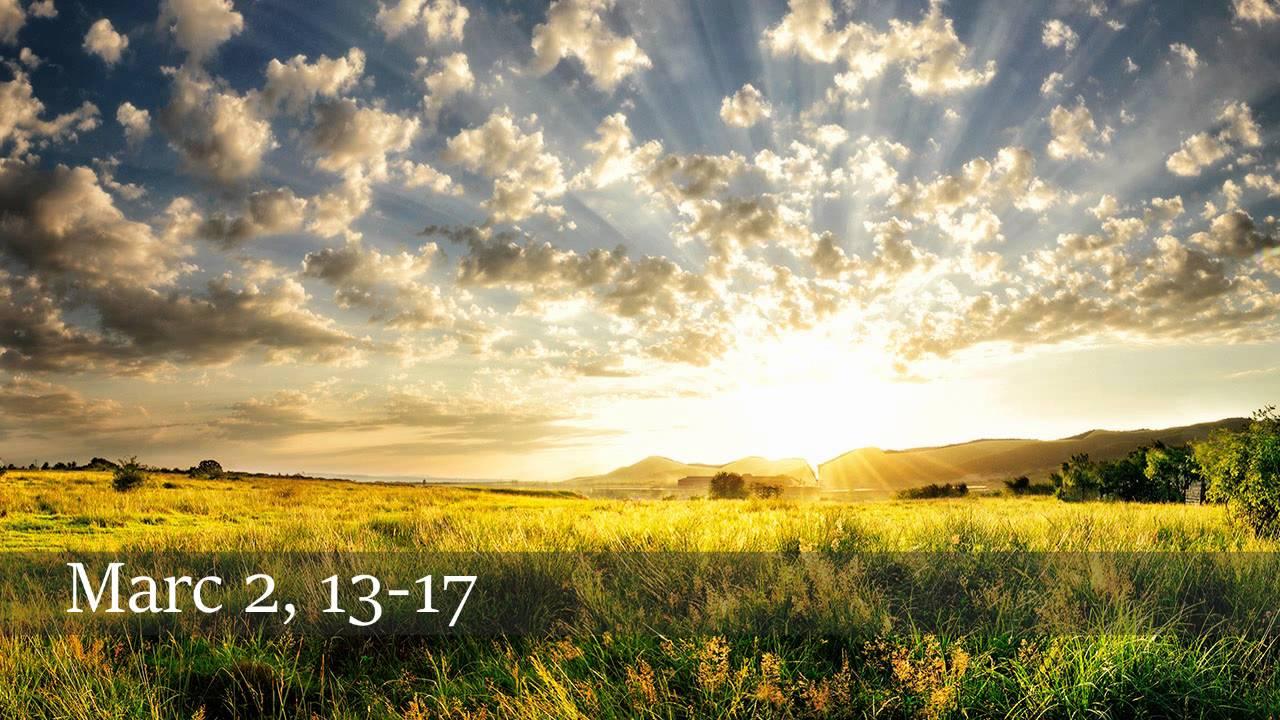 Appel de Lévi 26.jpg