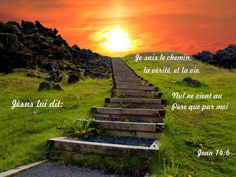 Je suis le chemin et la vie 2.jpg
