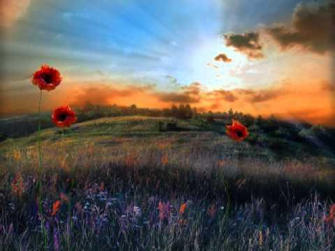 La beauty.jpg de Peter Murr jardin de Dieu