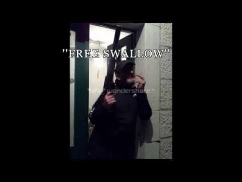 Josko Free Swallow.jpg