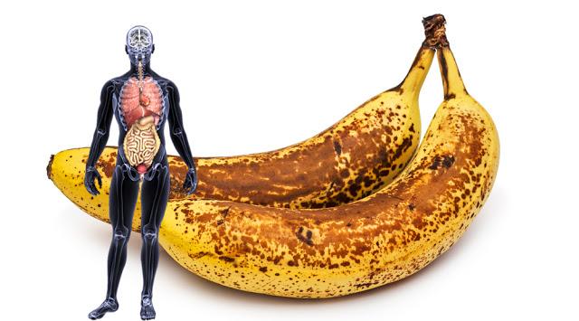 bananes1.jpg
