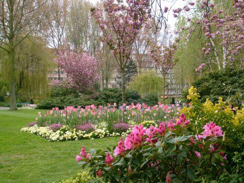 Le jardin bien fleuri du square  Saint Roch, non loin de l'Hôtel de ville du Havre