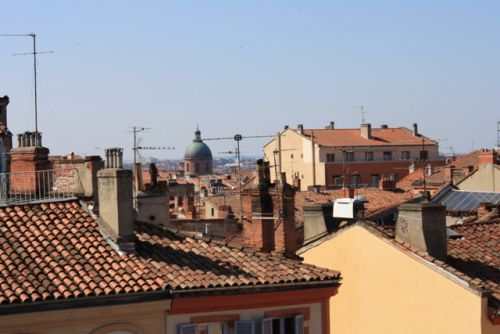 Vue sur les toits de Toulouse depuis la place des Carmes