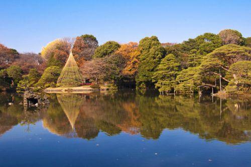 Le jardin Rikugien au Japon