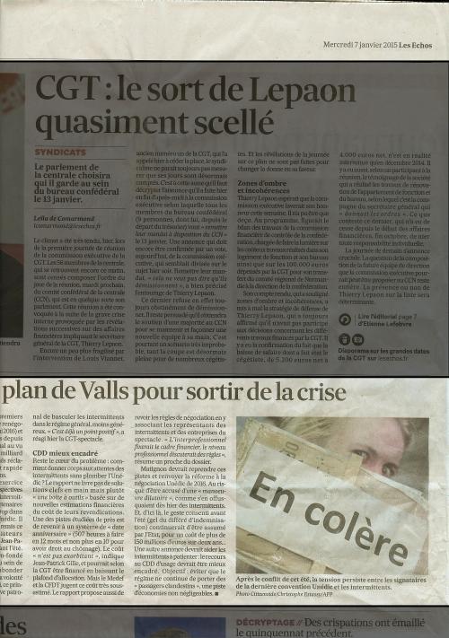 publications Les Echos du 7 janvier 2015.jpeg
