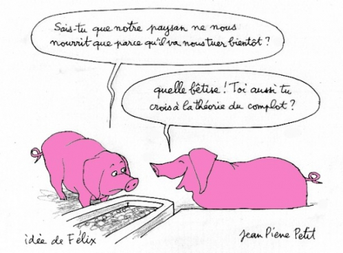 theorie-complot-cochons.jpg