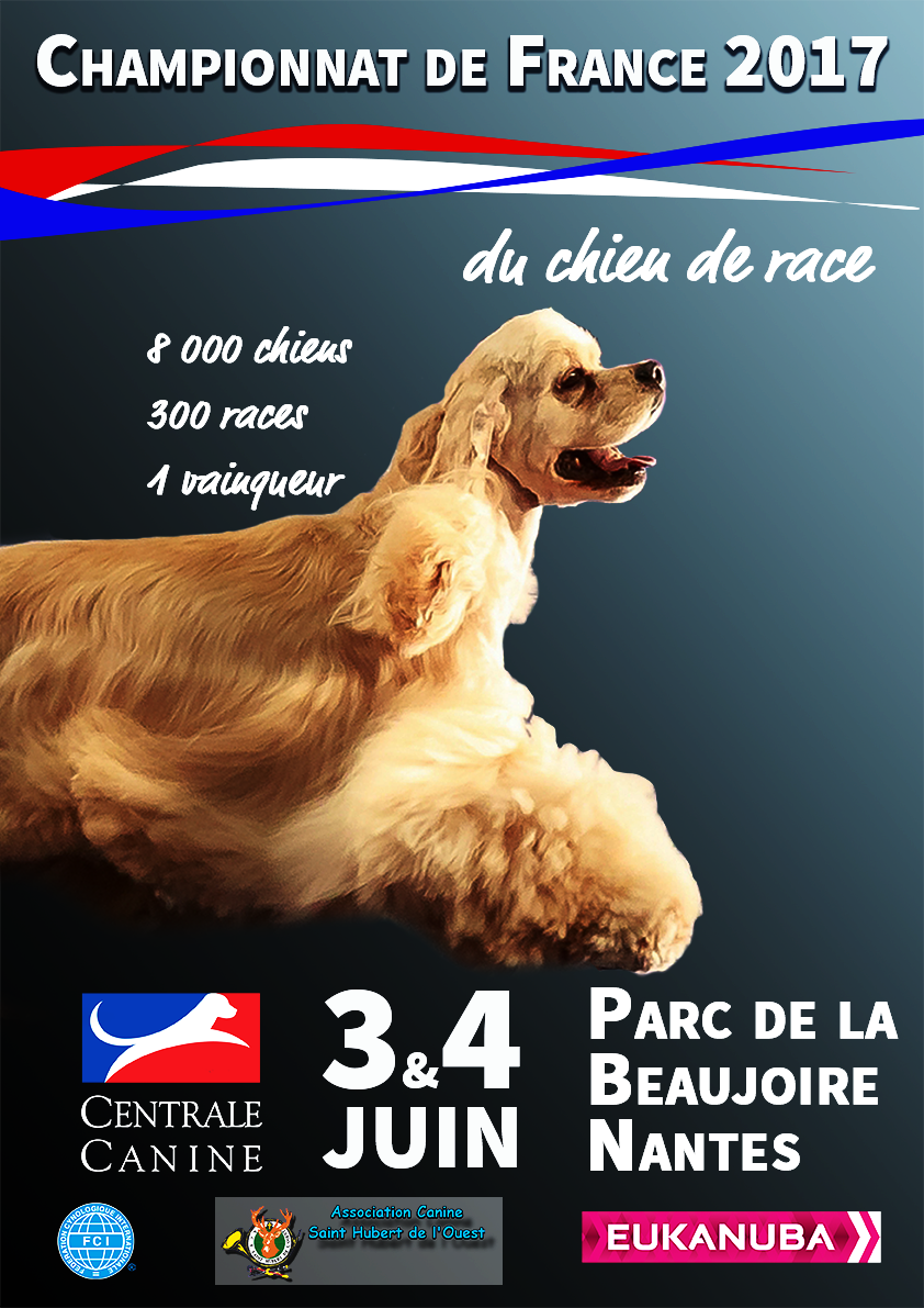 Affiche_VDEF.png