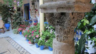 Patio Córdoba.jpg