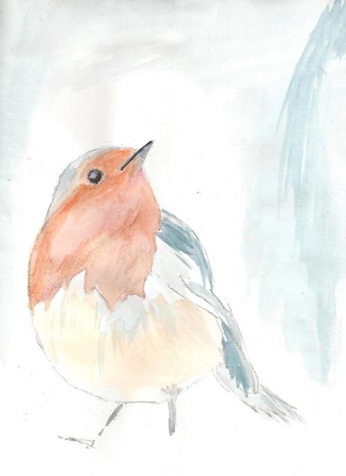 oiseau maridan.jpg