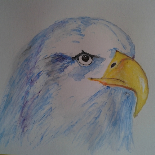 oiseau 2 daulat.jpg