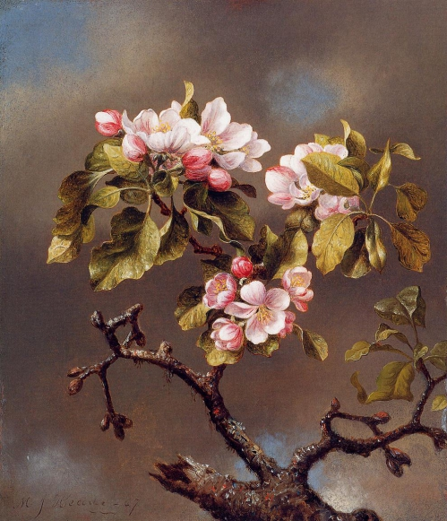 Branch_of_Apple_Blossoms_Against_a_Cloudy_Sky.jpg
