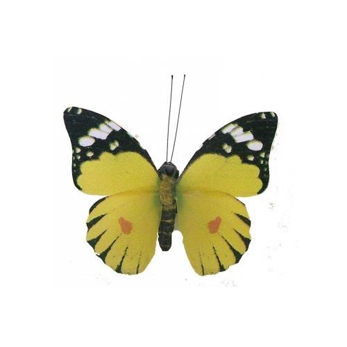 papillons-aimantes.jpg
