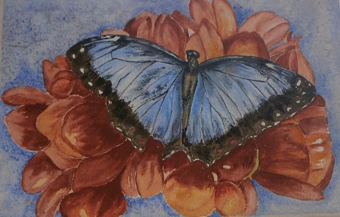 papillon cours virtuel 09-2015.jpg