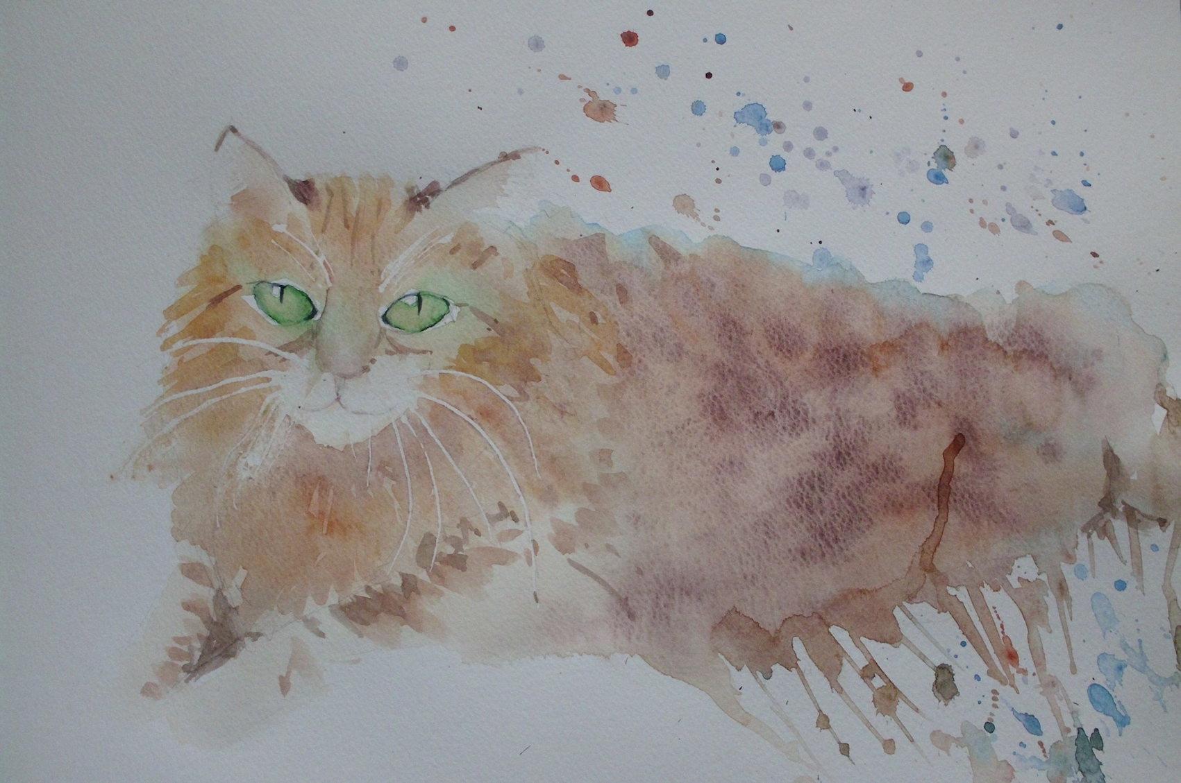 chat roux patricia.JPG