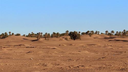 draa20130210_mahmid_dunes1.jpg