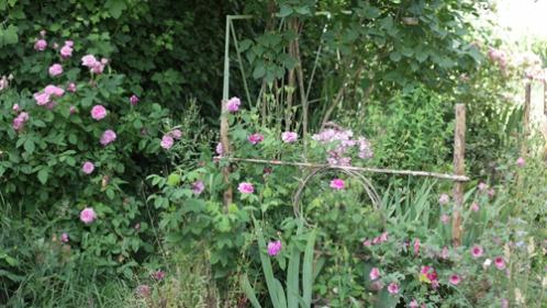 jardin du bas 05-07 2.jpg
