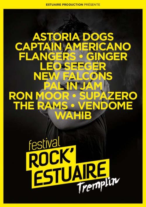 festival-rock-estuaire-rencontres-amis.jpg