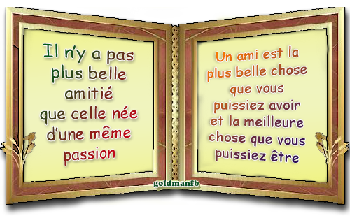 http://static.blog4ever.com/2012/09/713297/DblCadre-Amitie.png