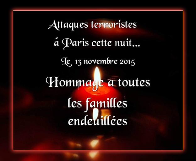 http://static.blog4ever.com/2012/09/713297/Hommage-Familles.png