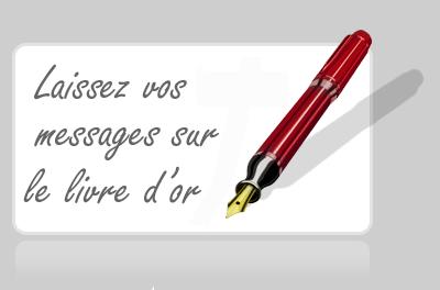 http://static.blog4ever.com/2012/09/713297/LivreDor2.png