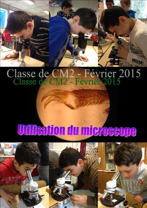 Microscope 04.jpg