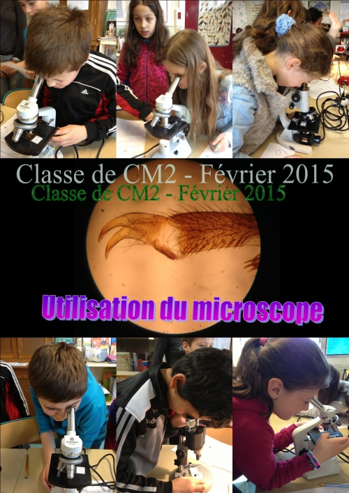 Microscope 01.jpg