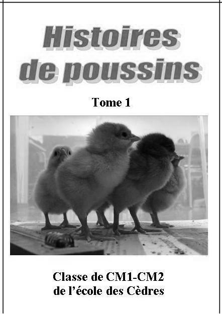 Histoires de poussins Tome 1 nb.jpg
