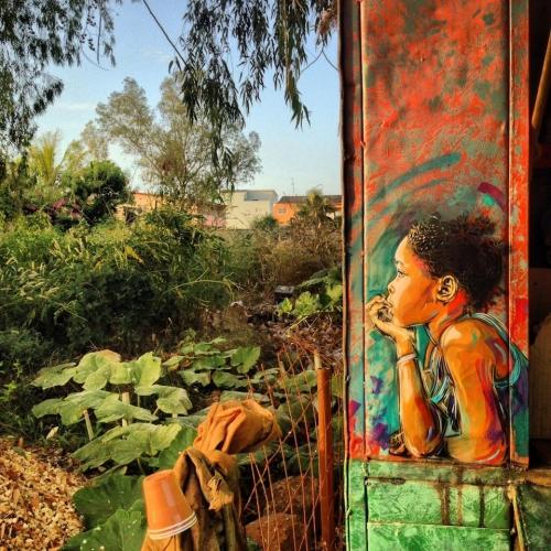 By C215 in Senegal..jpg