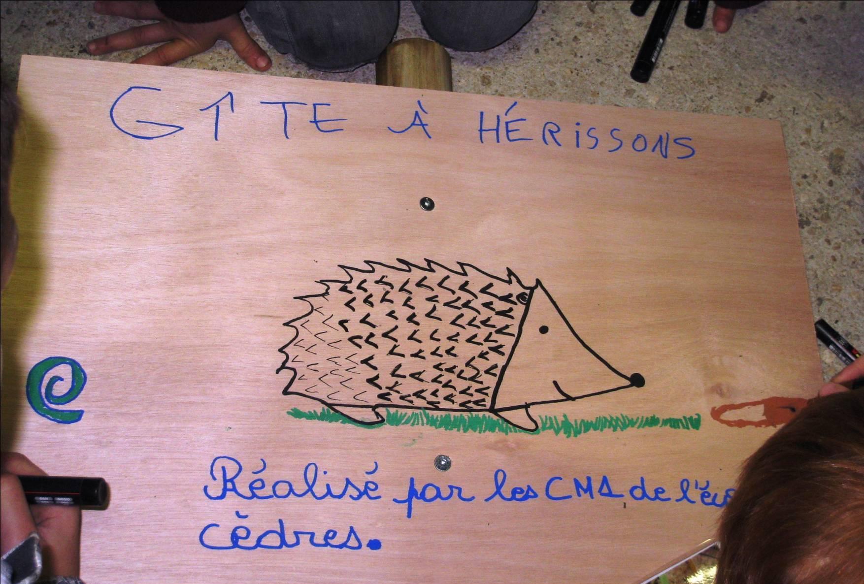Sortie latitude 21 - Hérisson.jpg