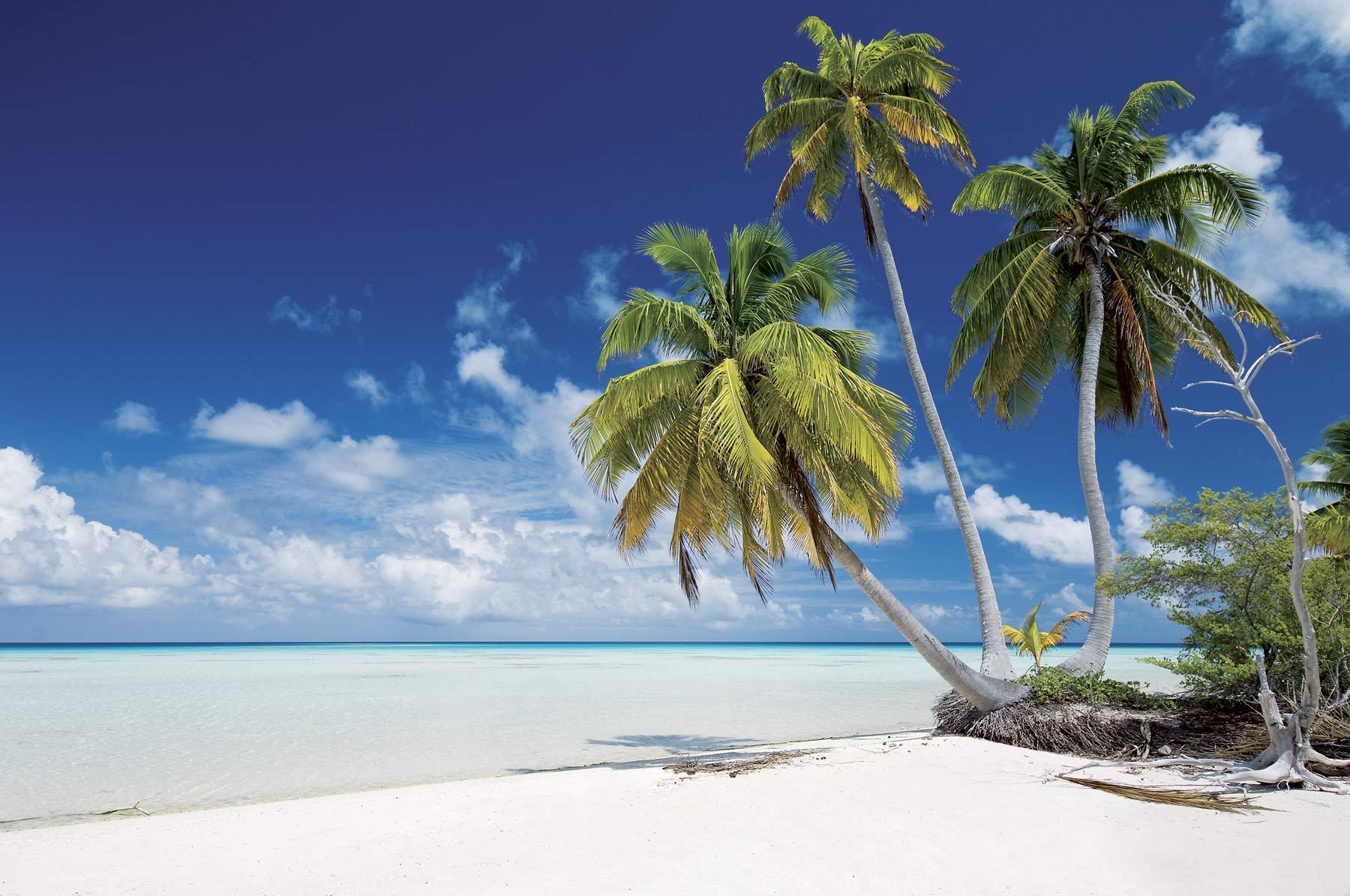 makemo-tuamotu-plage-lagon©P.Bacchet.jpg