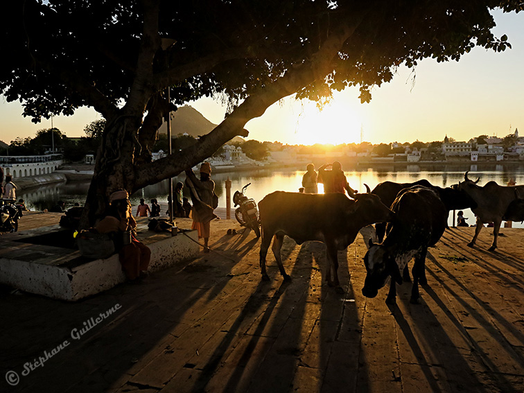 IMG_9607 Sunset point Pushkar SMALL.jpg