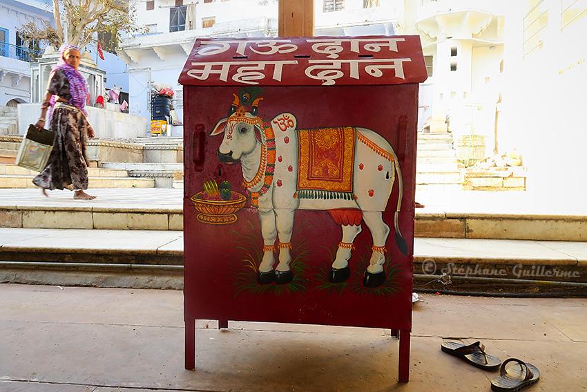 IMG_9955 Donation box Pushkar SMALL.jpg