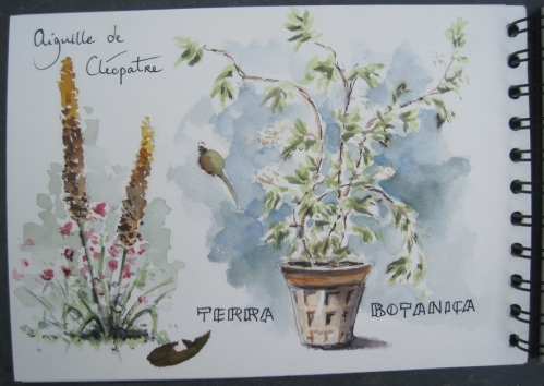 Terra Botanica (1).JPG