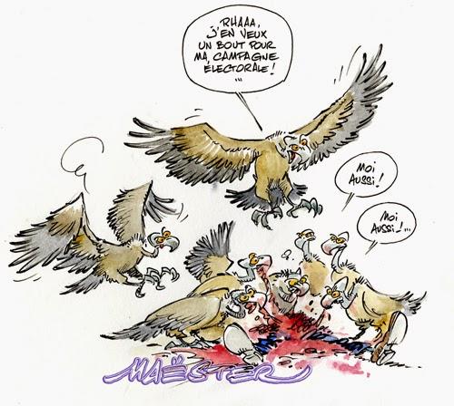 charlie-vautours001.jpg
