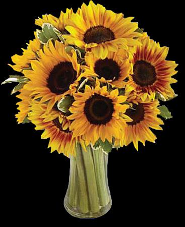 Tubes bouquets de fleurs couleurs dominantes jaunes - Fleur commencant par t ...