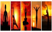 yogamax