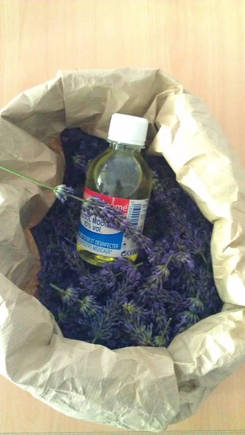 Cr er son parfum d 39 int rieur exemple la lavande l - Creer son interieur ...