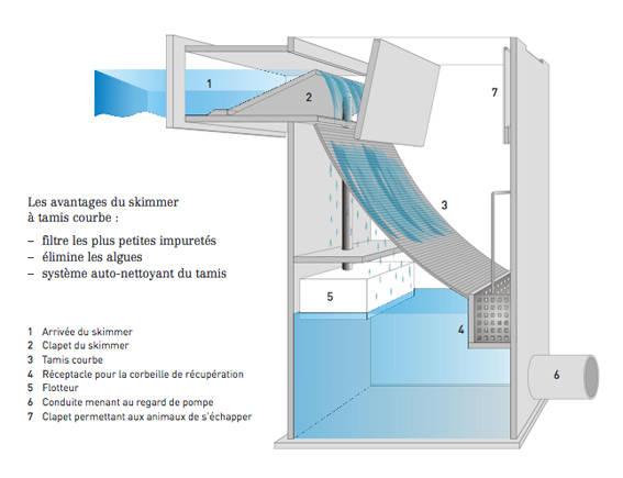 Piscine naturelle et traitement d 39 eau biologique sans for Plan piscine naturelle