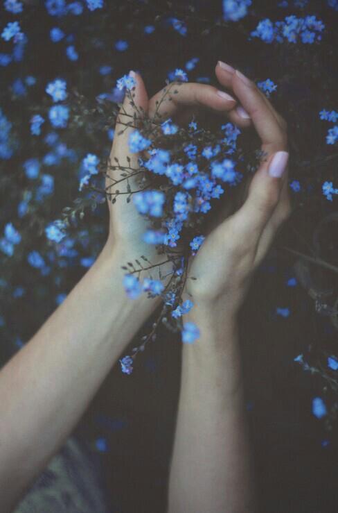 mains fleurs bleues.jpg