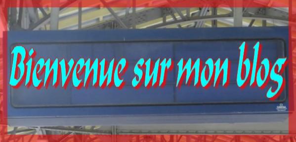 Bienvenue blog 11.07.jpg